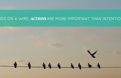 Birds on a Wire: Actions are More Important Than Intentions
