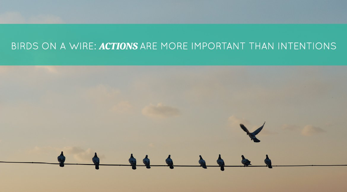 Birds on a Wire: Actions are More Important Than Intentions ...