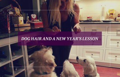 Dog Hair and a New Year's Lesson