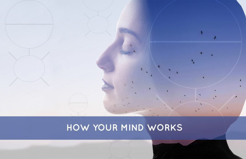 How Your Mind Works