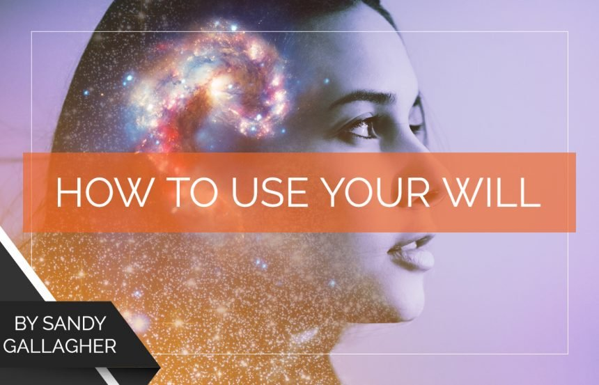 How to Use Your Will